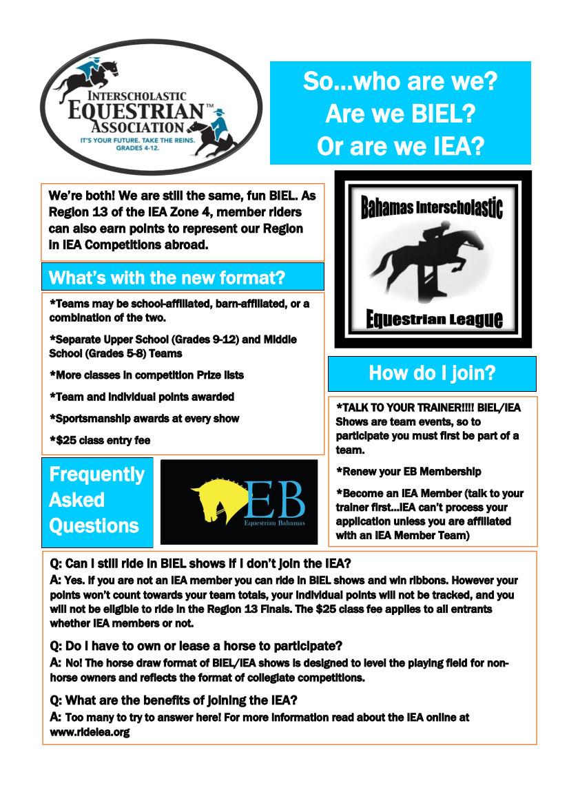 BIEL and IEA in Partnership - Promotional Flyer